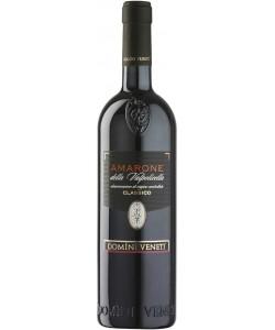 Amarone della Valpolicella Classico DOCG Domini Veneti 2011