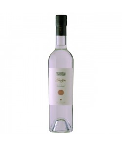 Grappa Tignanello Antinori