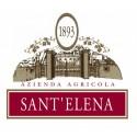 Azienda Agricola Sant'Elena