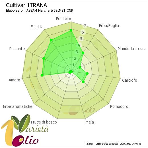 Aromi identificativi della cultivar Itrana