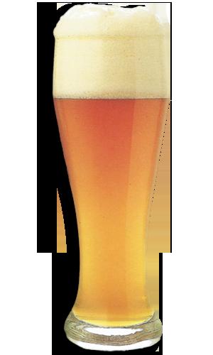 Come scegliere il bicchiere per la birra hello taste for Bicchieri tulipano
